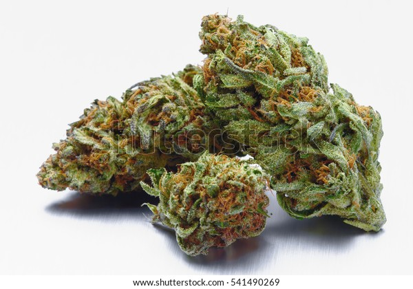 Close Blue Cookies Marijuana Buds On Stock Photo (Edit Now