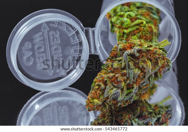 Close Blue Cookies Marijuana Buds Prescription Stock Photo