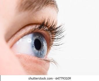 Close up blue eye with makeup