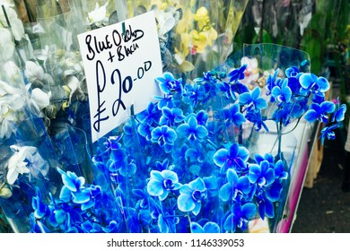 Close up of a Blue Orchid flowers on sale at a street market