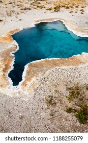 Close up of the Blue Star Spring in the Upper Geyser Basin at Yellowstone National Park