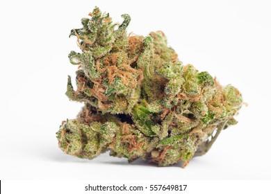 Close up of Blue Walker marijuana bud