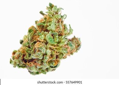 Close up of Blue Walker marijuana bud