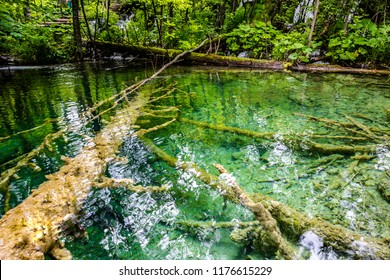 Close up of blue waterfalls at Plitvice lakes in a green forest during Summer ,  Plitvice lakes national park, Croatia