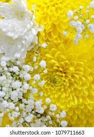 Close up of a bouquet filled with white pompom daisies and yellow chrysanthemums with delicate baby's breath added. Good for weddings, mother's day or birthdays. Vertical orientation