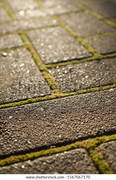 Close up of brick pavers layed out in criss-cross pattern with shallow depth of field for a pathway at a home.