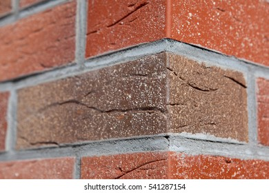 Close up brick walls. the corner of the house