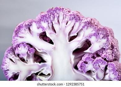 close up of broccoli