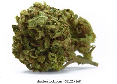 Close up of Bubbka Kush indica medical marijuana flower on white background
