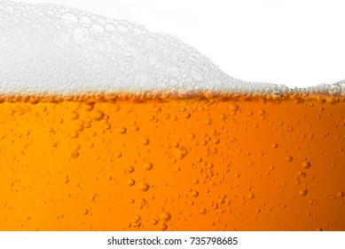 Close up Bubble froth of beer in glass isolate on white background