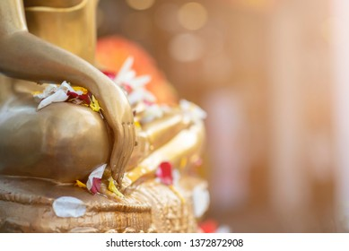 Close up Buddha statue with raw of Brass.  Hand of buddha statue with leaf on the lap of buddha. Believe, Culture, Traditional. Buddhist believe concept. Calm concept. meditation concept.