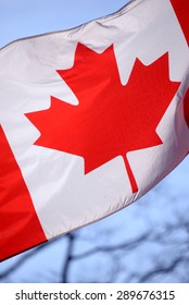 Close up of canadian flag waving against the sky