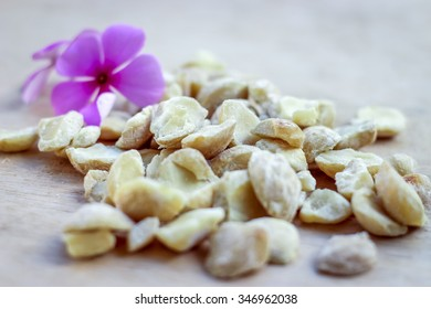 Close up of Candlenut with purple flower