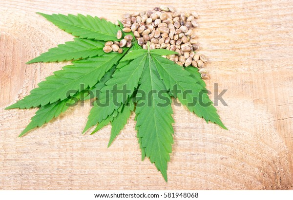 Close up - cannabis leaf and seeds on wooden table.