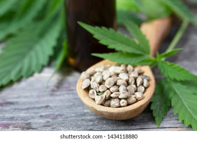 Close up of cannabis seeds with leaves and bottle of oil in the background.