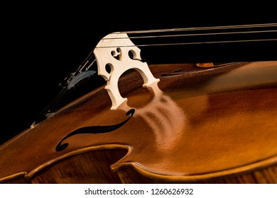 Close up of Cello Bridge, F-Holes and Lower Bout, Strings and Reflection