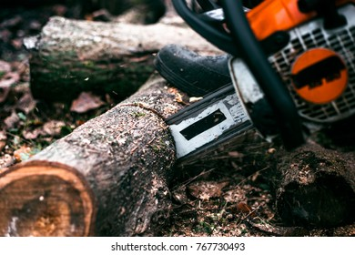 Close up chainsaw cutting log of wood