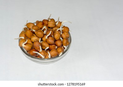 Close up of Chickpeas or bengal gram sprouts on a bowl with white isolated background and side angle view,copy space.