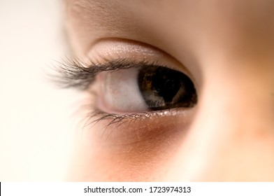 Close up of a child's eye