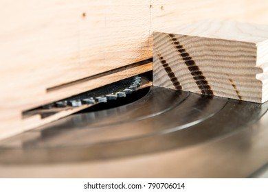 Close up circular saw in carpenter's worshop