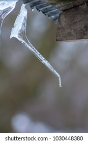 Close up of clean and white icicles