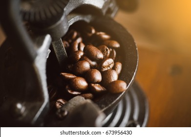 Close up coffee beans, coffee grinder with copy space, mill, roasted coffee beans on dark wooden background