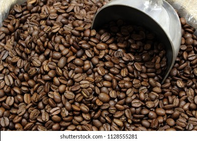 Close up of coffee beans and a coffee scooper.