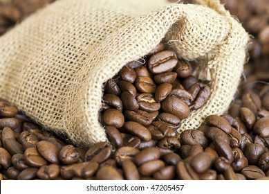 close up of coffee crop