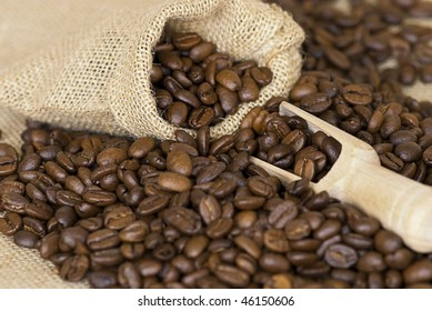 close up of coffee crop and wooden spoon