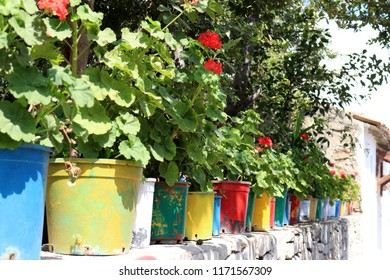 Close up of colorful flower pots lined up in a row on the beautiful, little island Bozcaada in Turkey