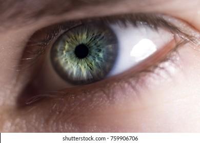 Close up of colorful, greenish-blue human eye