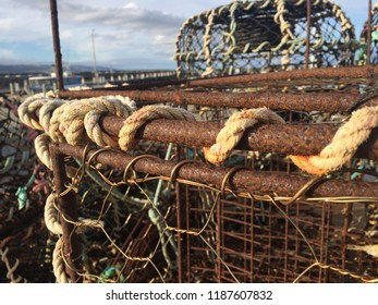 Close up of crab pot on wharf