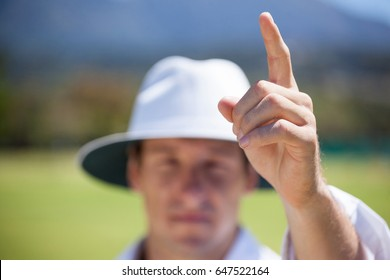 Close up of cricket umpire signaling out sign during match on sunny day