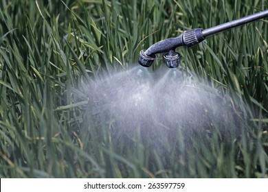 Close Up of a Crop Sprayer, nozzle spraying fertilizer on crop