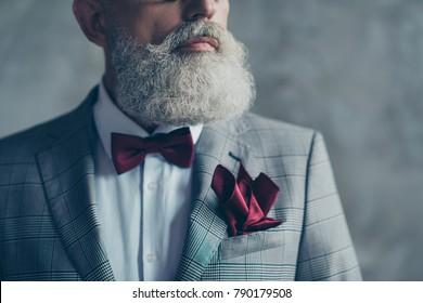 Close up cropped photo of elite chic sharp-dressed trendy wealthy rich groomed luxurious brutal macho man wearing checkered grey jacket white shirt burgundy bow-tie tissue isolated on gray background