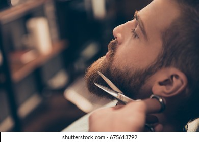 Close up cropped profile photo of a styling of a red beard. So trendy and stylish! Advertising and barber shop concept