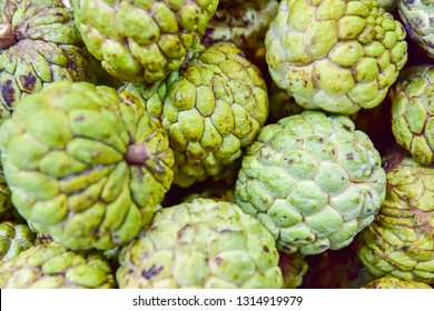 close up custard apple fruit to sell in fresh market. Annona reticulata