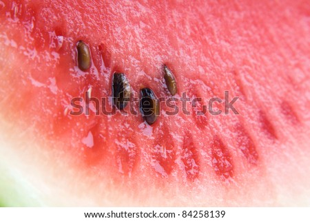 Close up of Cut Ripe Watermelon slice with pips or seeds