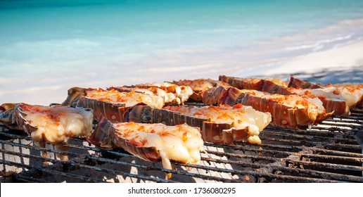 Close up of delicious fresh lobsters cut in half and cooking on a barbecue grill against a beach and turquoise sea background.