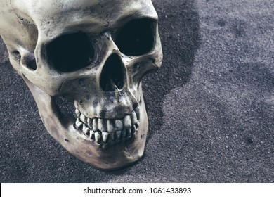 close up detail shot of a scenic human skull on the desert sand with a dark night background