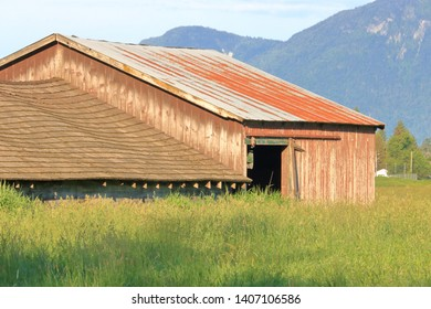 Close, detailed view of an old established farm building set in a field of grass growing in a valley.