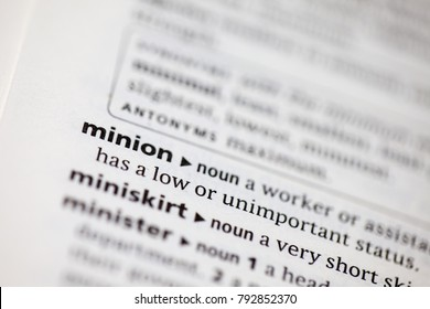 Close up to the dictionary definition of Minion