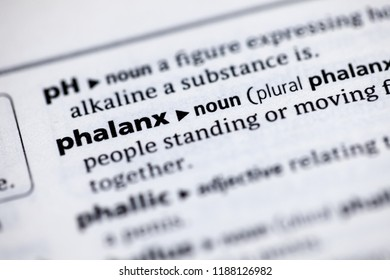 Close up to the dictionary definition of Phalanx