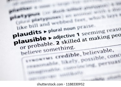 Close up to the dictionary definition of Plausible