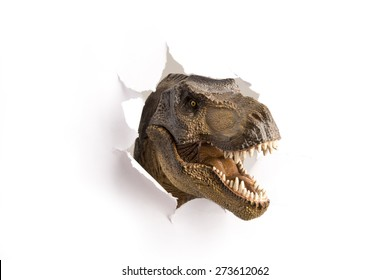 close up dinosaur through the paper wall