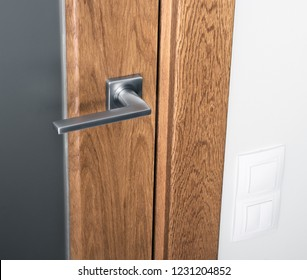 Close - up of door handle on wooden door with glass. White switches on the wall. Interior element