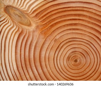 close up of douglas fir wood
