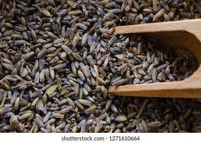 Close up of dried Lavender buds with wooden scoop.. Herbal background.