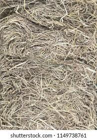 Close up dried straw pattern