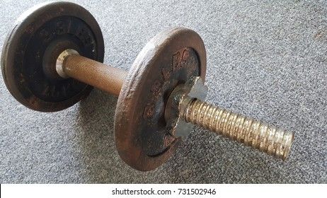 Close up of Dumbbell in Gym